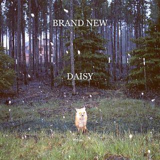 Brand_new-daisy